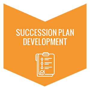 Develop your nonprofit succession plan over a period of 12 months.