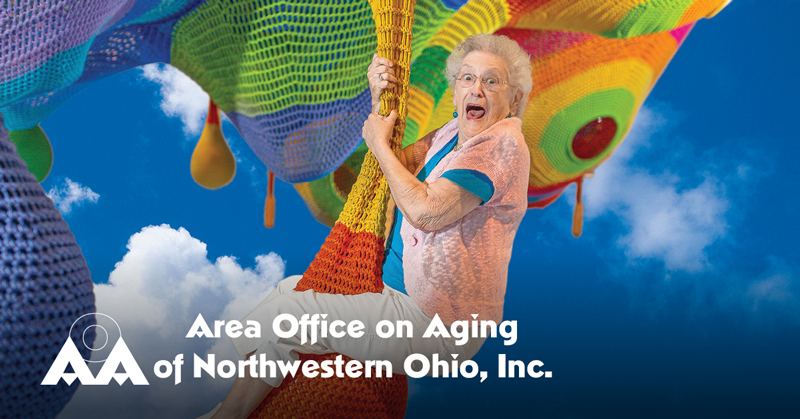 Open Position: Director of Development – Area Office on Aging (AOoA) Foundation [Apply to Aly Sterling Philanthropy]