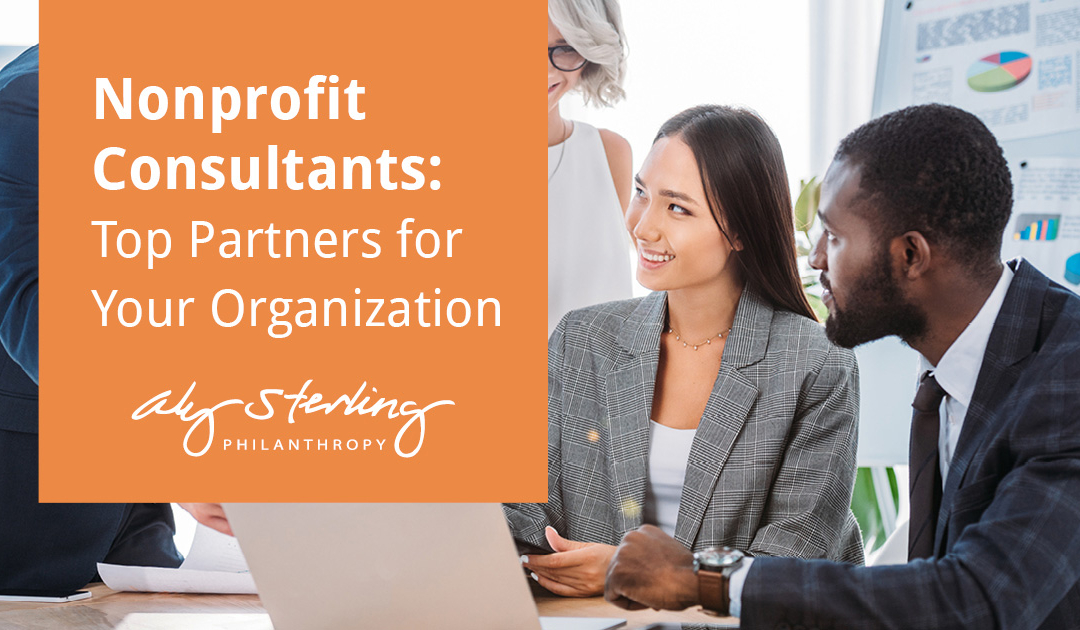 Nonprofit Consultants: Top 24 Partners for Your Organization