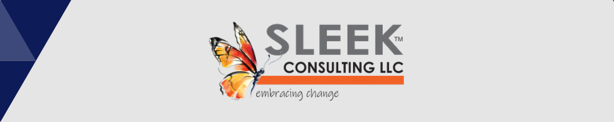 Choose Sleek Consulting as your nonprofit consultant for higher education.
