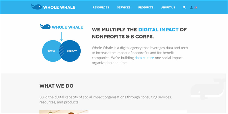 Go to the Whole Whale website for more information about their nonprofit consulting services.