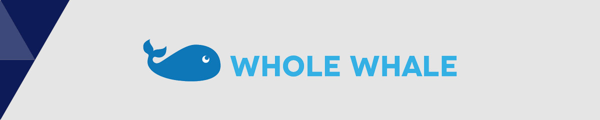 Whole Whale is the best nonprofit consultant for data analytics.