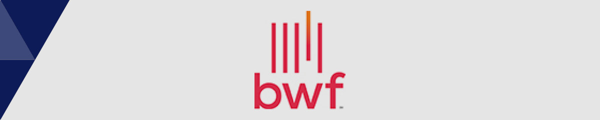 BWF is the best nonprofit consultant for healthcare philanthropy.